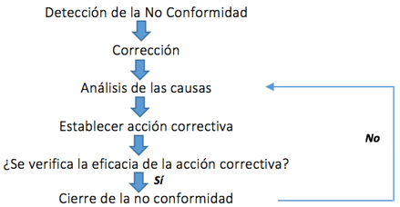 análisis de no conformidades en el momento de realizar una evaluacion de desempeño empresarial