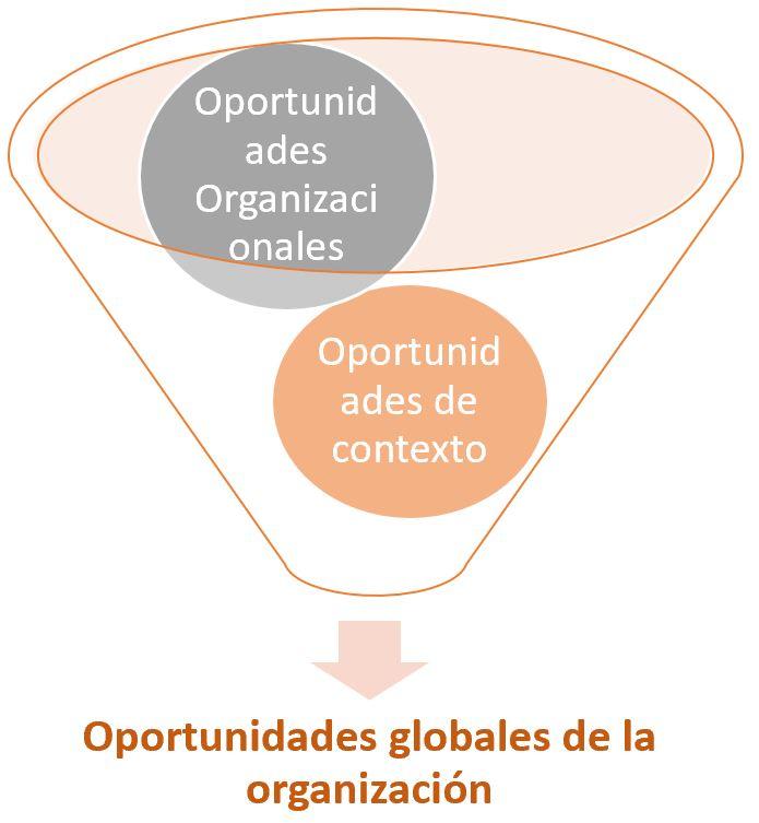 tipos de oportunidades de una matriz dafo