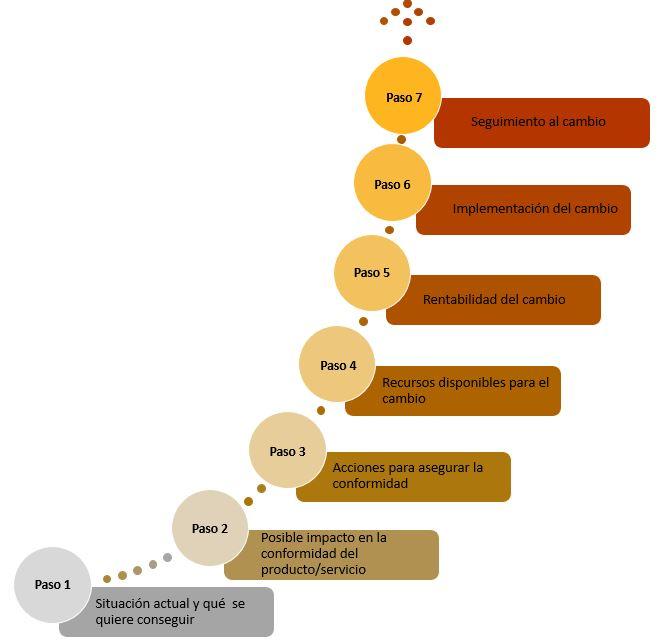 7 Pasos para llevar una buena gestion del cambio