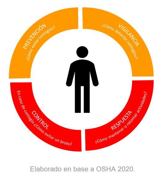 esquema protocolos sanitarios