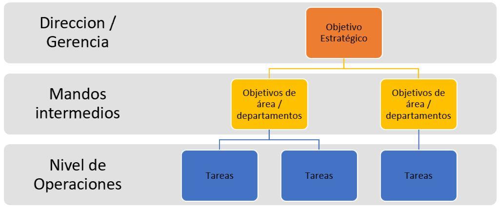 esquema desagregado de objetivo estrategico